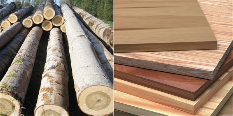 Nên dùng gỗ tự nhiên hay gỗ công nghiệp